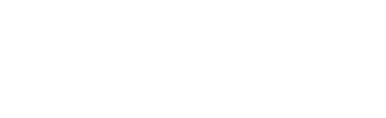 SimplePerfect-Logo-reverse-01