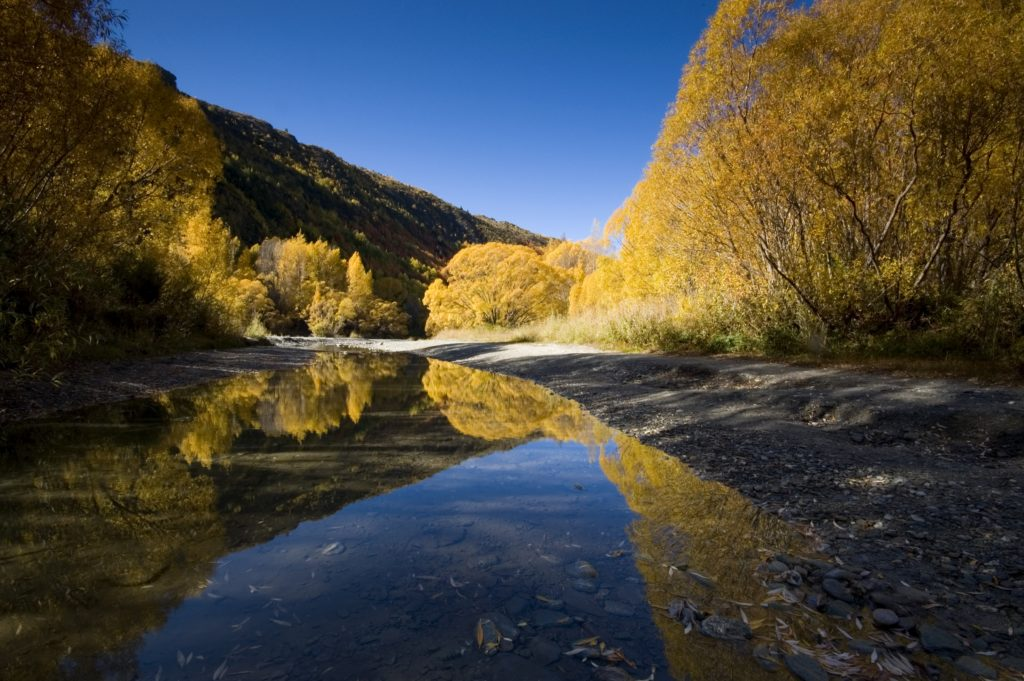The best day walk in Arrowtown, the Arrow River Trail, on an autumn day