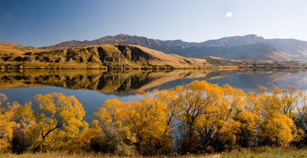 The beautiful Lake Hayes loop track with autumn scenery and colours is one of the best hikes in Queenstown
